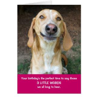 Peluche tarjeta de cumpleaños de las palabras del
