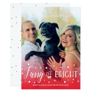 Peludo y brillante - foto del navidad del mascota invitación 12,7 x 17,8 cm