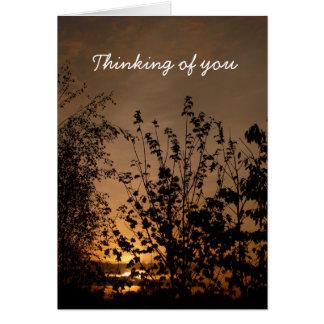 Pensamiento en usted el | felicitaciones