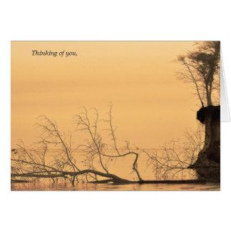 Pensamiento en usted fotografía del agua de la tarjeta de felicitación