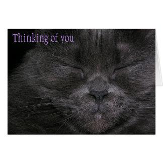 Pensamiento en usted gato tarjetón