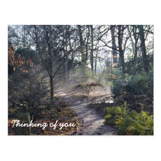 Pensamiento en usted invernadero brumoso postal