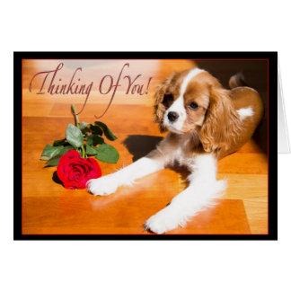 Pensamiento en usted perrito arrogante del perro tarjeta de felicitación