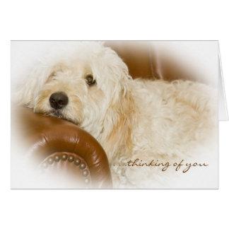 Pensamiento en usted - reclinación soñadora del tarjeta de felicitación