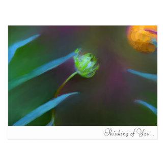 Pensamiento en usted… Regalo pintado fijado Postal