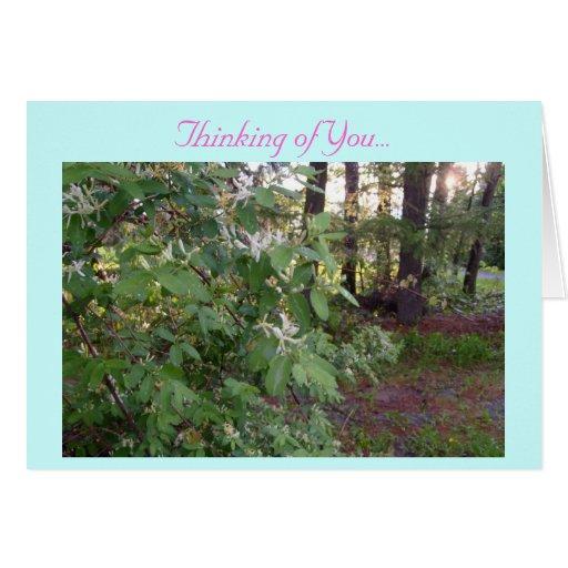 Pensamiento en usted… tarjetas