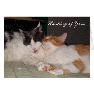 Pensamiento en usted tarjeta de felicitación linda