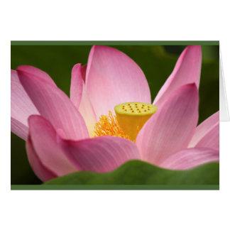 Pensamiento en usted tarjeta de Lotus