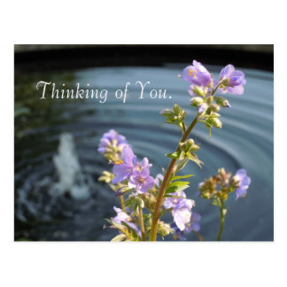 Pensamiento en usted tarjeta postal