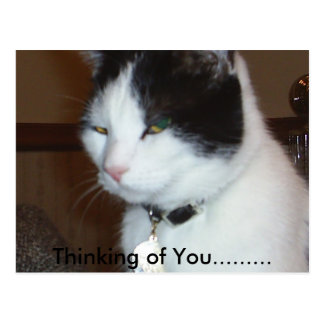 Pensamiento en usted ......... postal