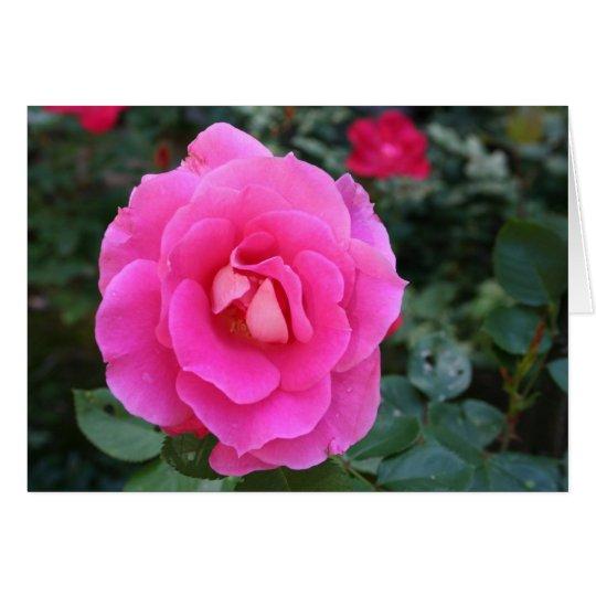 Pensamiento en usted tarjeta subió rosa