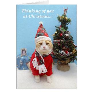 Pensamientos de usted en el navidad tarjeta