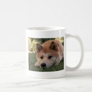 Pensamientos profundos del perro de Akita Inu Taza De Café