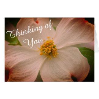 """""""Pensando en usted"""" flor del Dogwood Tarjeta De Felicitación"""