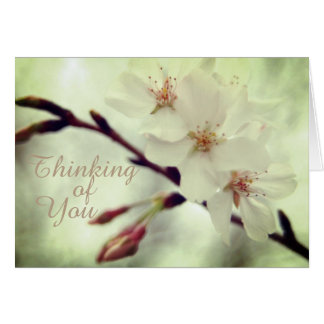 """""""Pensando en usted"""" flores de cerezo delicadas Tarjeta De Felicitación"""