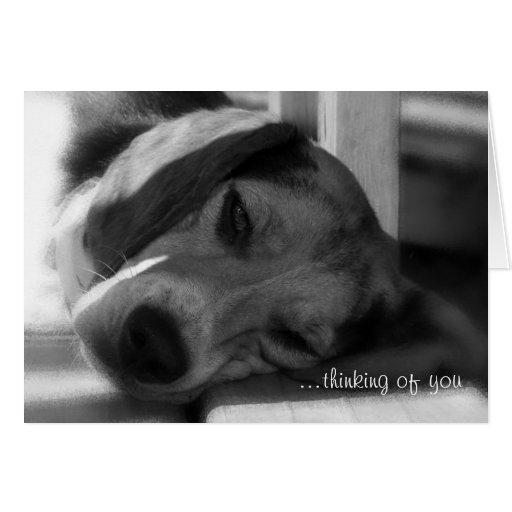 … pensando en usted saludo Snoopy del perro del ta Tarjeton