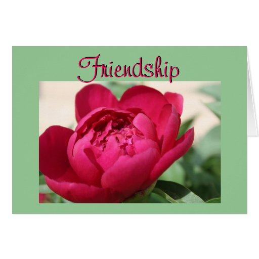 Peony de la amistad tarjetón
