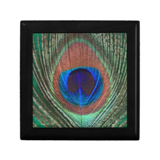 Pequeña caja de regalo de la teja de la pluma verd