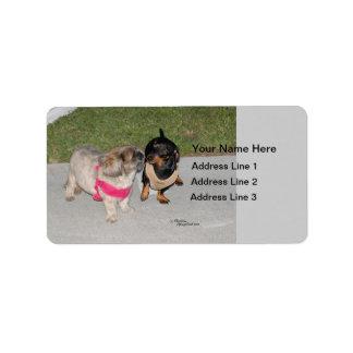 Pequeña etiqueta de dirección de los perritos