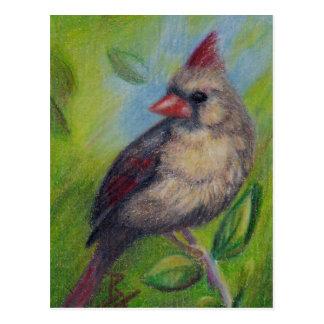 Pequeña postal del aceo de Srta. Cardinal