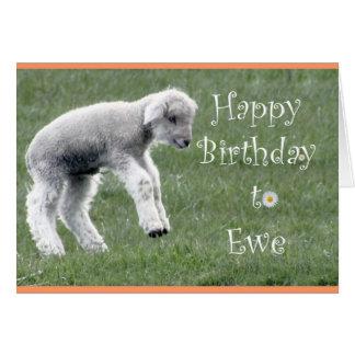 Pequeña tarjeta de cumpleaños del cordero
