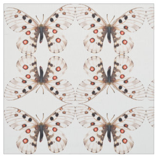 Pequeña tela de las mariposas de Apolo Telas