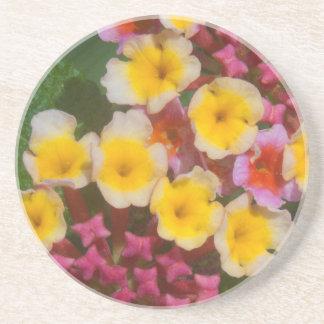 Pequeñas flores tropicales amarillas con los posavasos de arenisca