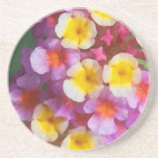 Pequeñas flores tropicales rosadas y púrpuras posavasos de arenisca