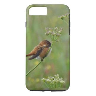 Pequeño colibrí lindo funda iPhone 7 plus
