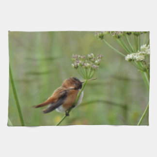 Pequeño colibrí lindo paño de cocina