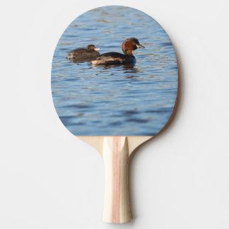 Pequeño Grebe y polluelo Pala De Ping Pong