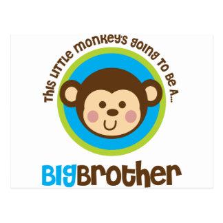 Pequeño mono que va a ser un hermano mayor postales