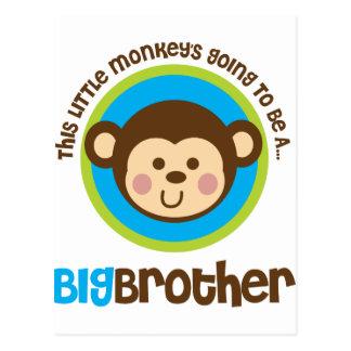 Pequeño mono que va a ser un hermano mayor postal