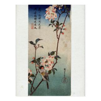 Pequeño pájaro en una rama de Kaidozakura por Postal