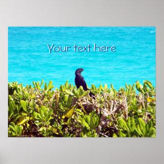 Pequeño pájaro negro lindo póster
