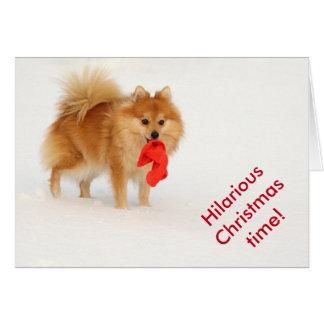 Pequeño perro con el gorra y la nieve blanca de tarjeta de felicitación