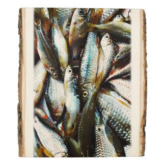 Pequeños pescados blancos panel de madera
