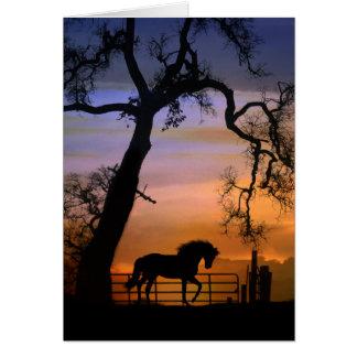 Pérdida de caballo, tarjetas de condolencia del