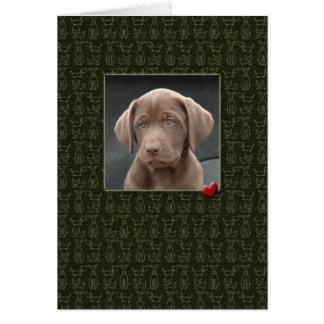 Pérdida de la condolencia del mascota de tarjetas
