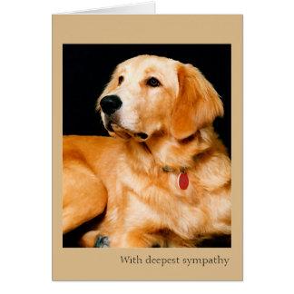 Pérdida de tarjeta de condolencia del perro