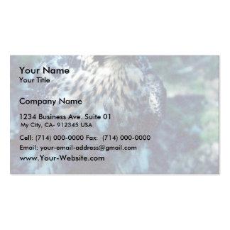 Peregrino joven tarjetas de visita