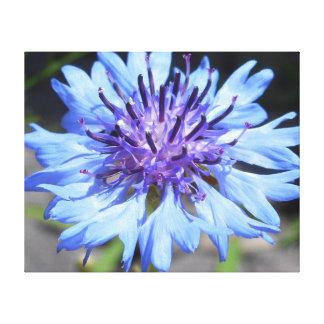 Perfección floral en azul lona envuelta para galerías