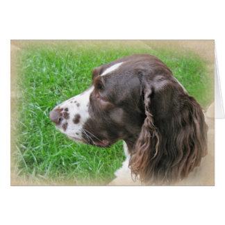 Perfil personalizado del perro de aguas de tarjeta pequeña