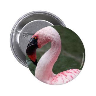 Perfil rosado pins