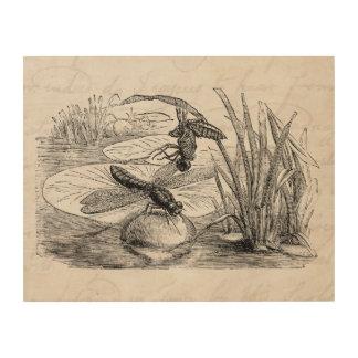 Pergamino de las libélulas de la antigüedad de la impresión en madera