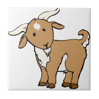 perilla de la cabra azulejo cuadrado pequeño