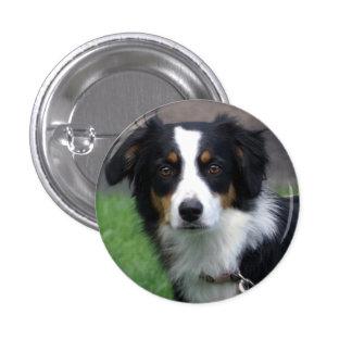 Perno del perro chapa redonda de 2,5 cm