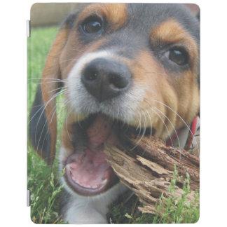Perrito adorable del beagle que mastica en la cover de iPad