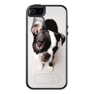 Perrito de Edison Boston Terrier Funda Otterbox Para iPhone 5/5s/SE