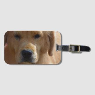 Perrito de oro etiquetas para maletas